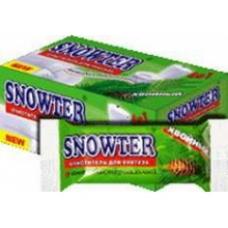 SNOWTER Блок запасной для подвески-очистителя унитаза Хвоя 40 г.